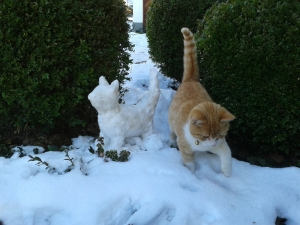 Katze_mit_Schneekatze